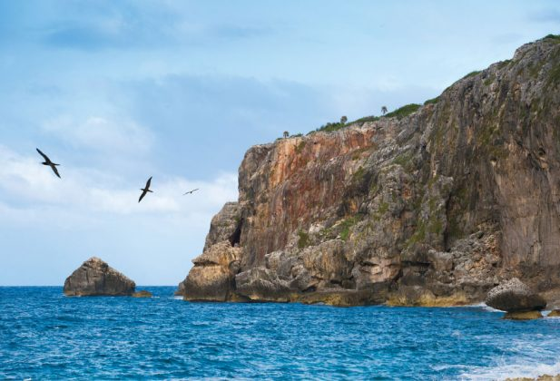 View of water and cliffs on Cayman Brac with birds wheeling in the air.