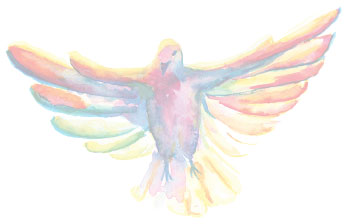 Watercolor painting of a dove.
