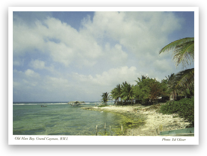 Old postcard showing Old Man Bay, Grand Cayman